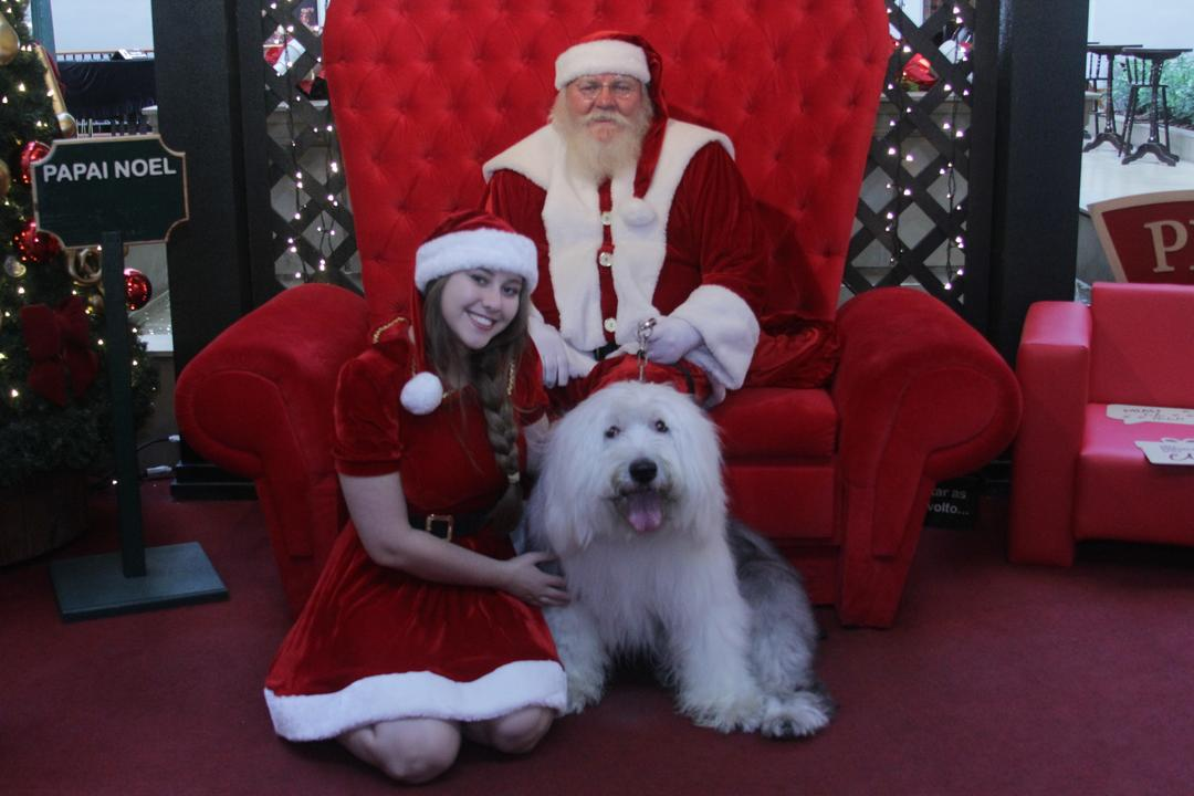 Fábrica de Presentes do Noel traz todo o encanto do Natal para o Shopping Curitiba