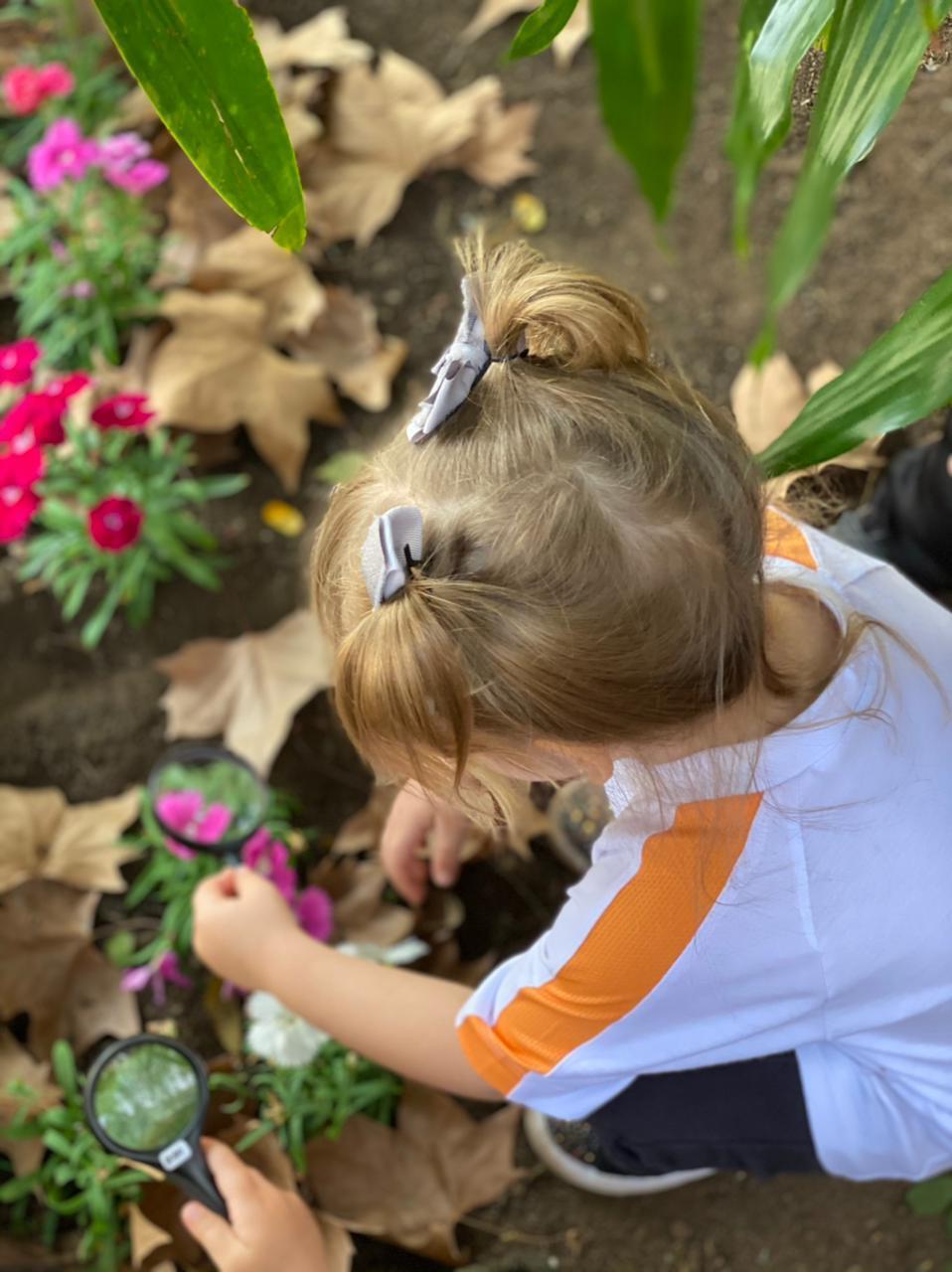 Ecoalfabetização: vínculo emocional com a natureza desenvolve consciência ambiental desde cedo