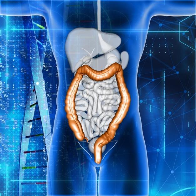 Evento discute sobre abordagem das novas terapias e tratamentos consolidados em tumor gastrointestinal