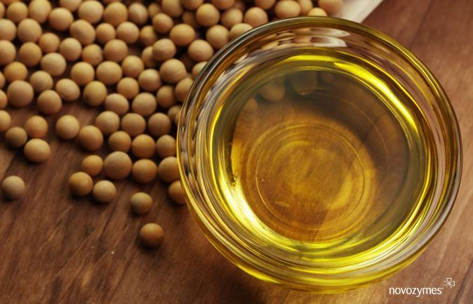 Novozymes lança novo produto para maior rendimento da indústria de óleos vegetais