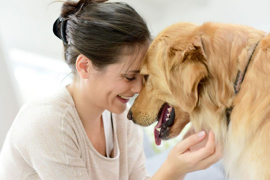 Dia das mães é celebrado também pelas mães de animais de estimação