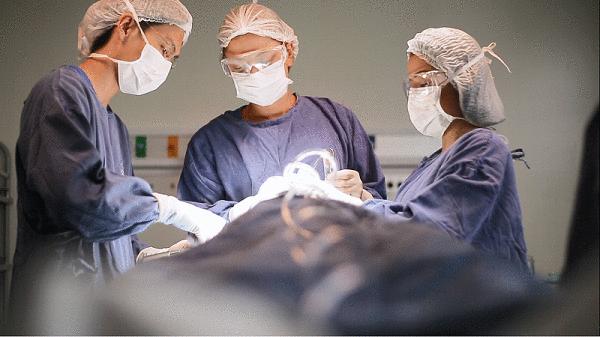 PUCPR abre cursos rápidos para profissionais na área de saúde com prática nos hospitais do Grupo Marista