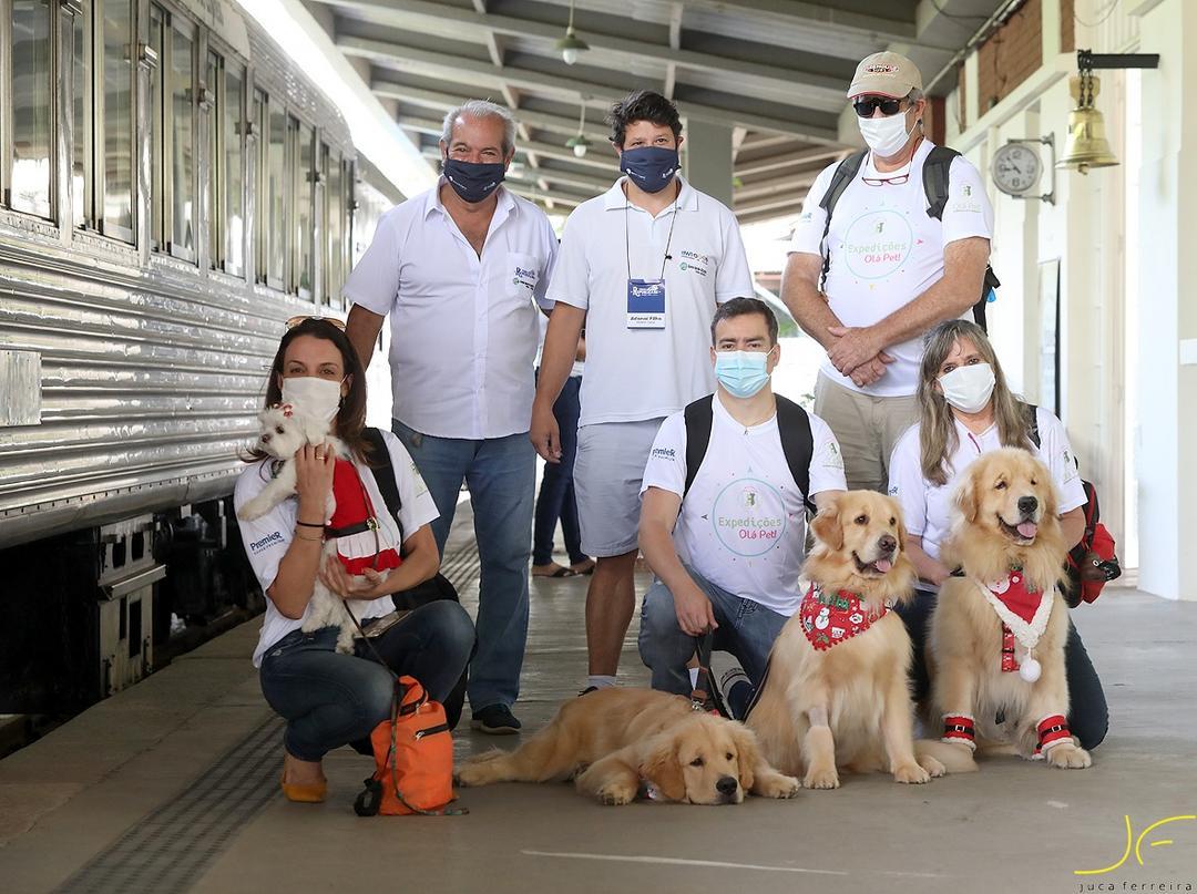 Viagem com pets: animais de estimação ganham vagão de luxo em trem turístico de São Paulo