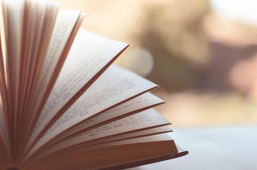 Feira Top Livros oferta cerca de 20 mil livros a R$ 10 no Shopping Estação