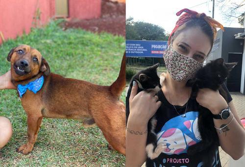 Catuaí Trends: evento online arrecada doações para ONG de animais abandonados