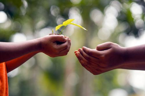 Cooperativismo de crédito: crescimento com propósito e foco no ser humano