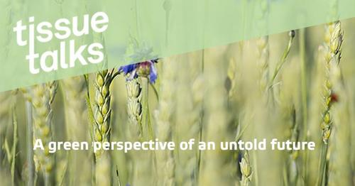Tissue Talks: Valmet promove palestras online para clientes na área de tissue