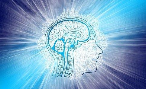 Esclerose Lateral Amiotrófica: doença rara degenerativa pode ser assistida por cuidados paliativos