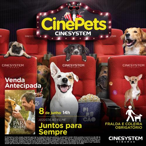Curitiba recebe sessão pet friendly de cinema