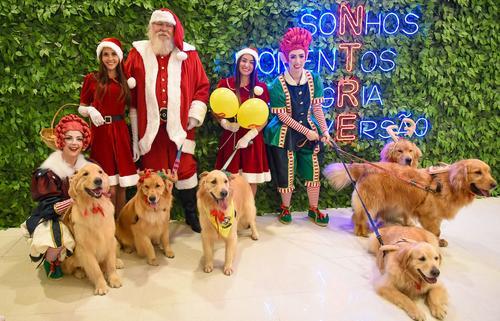 Fábrica de Presentes do Noel está encantando o público no Shopping Curitiba
