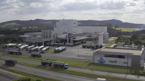 Inovação: mercado brasileiro de lácteos recebe primeira proteína concentrada de leite (MPC) em pó